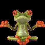 dj-smiley-émoticône-clipart-cartoon-grenouille-zen-fond-transparent